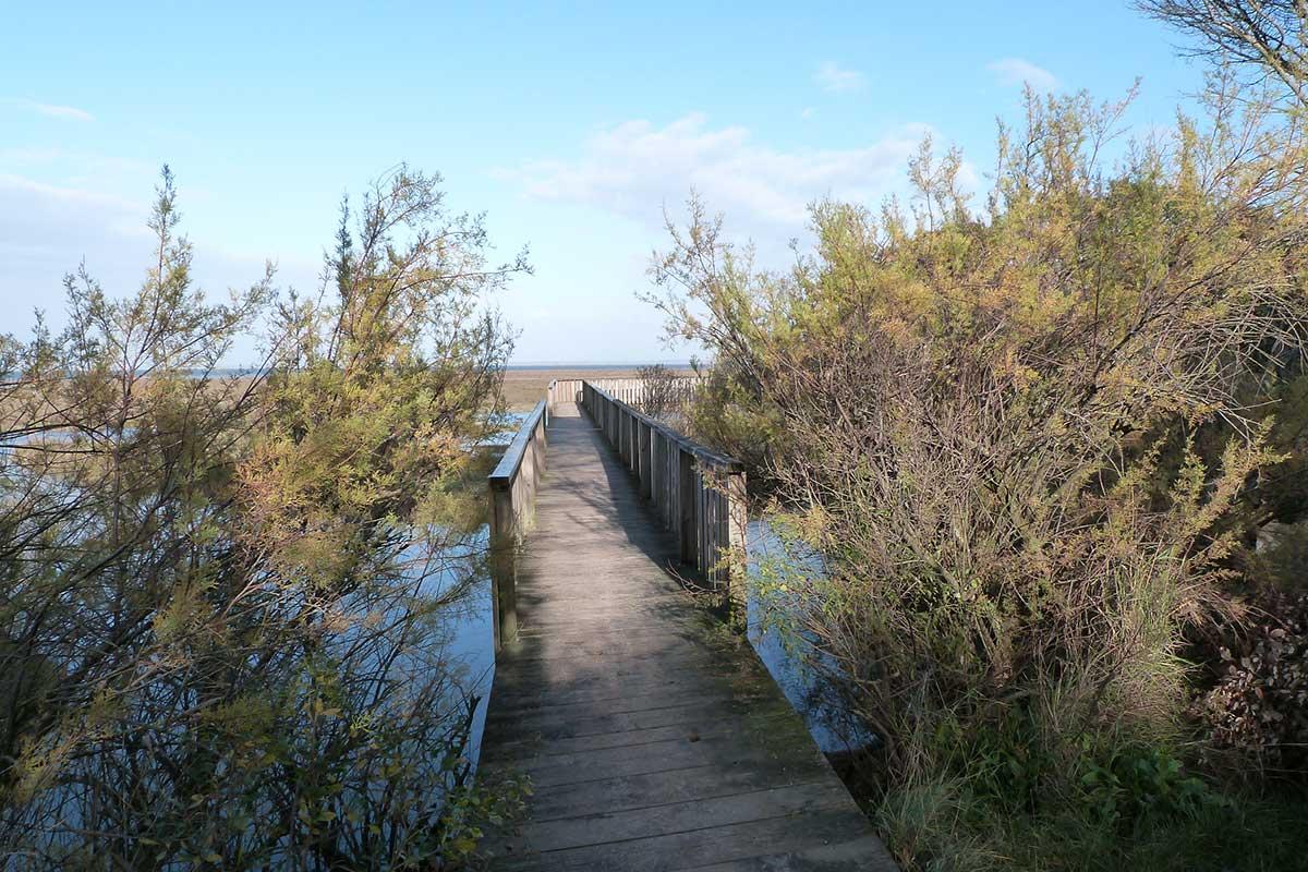 A pied ou en vélo, parcourez le sentier littoral